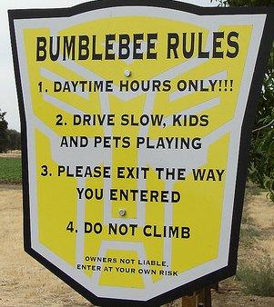 Bumblee-transformer-sign